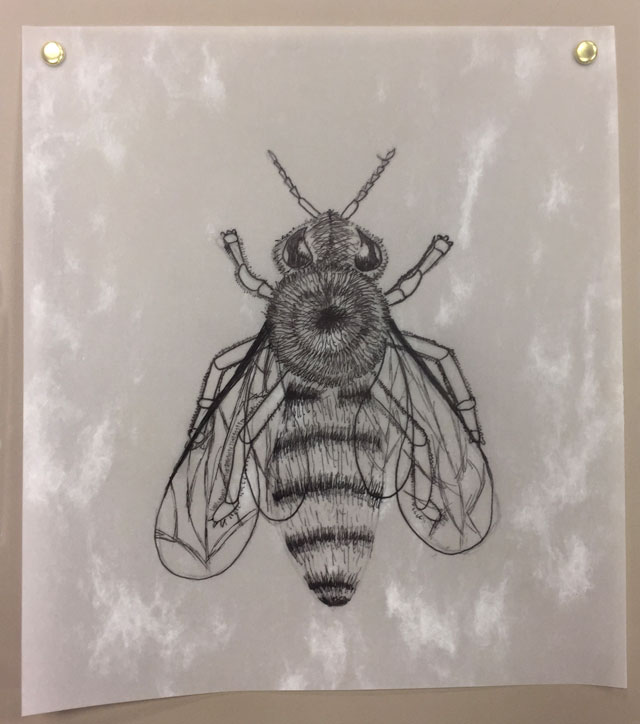 Bee Illustration Art Lesson